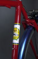 Strawberry Garage seat tube decal detail.