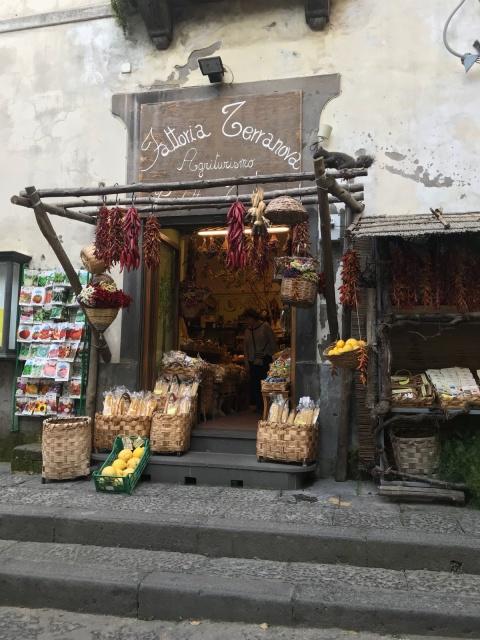 """A photo of an Italian shop """"Terra Nova"""" provided by Nadia Dragoni of SILVA.  Thanks Nadia."""