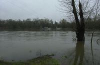 Thanksgiving weekend 2016.  Willamette River higher than flood stage 16 with the Wheatland Ferry tethered on the westside of the river which was our lunch destination.