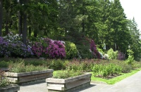Spring 2007 Washington Park, Portland, Oregon.