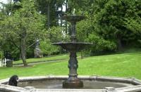 Spring 2007 Washington Park, Portland, Oregon.  Ollie gets a drink in the fountain.