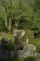 Winter Garden in Hoyt Arboretum 2005 009